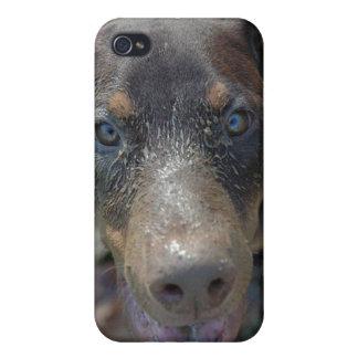 dirty doberman iPhone 4/4S cases
