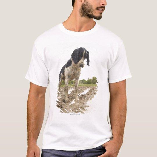 Dirty dog looking at tennis ball in mud T-Shirt