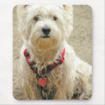 DIRTY DOG MOUSE PAD