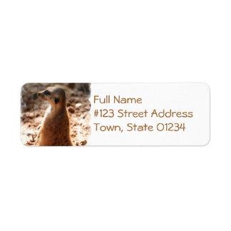 Dirty Meerkat Mailing Labels