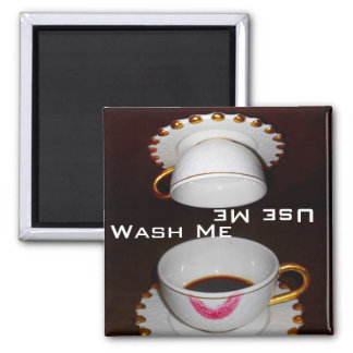 Dirty or Clean : Wash Me or Use Me Dishes 2 Inch Square Magnet
