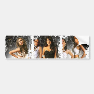 Dirty Photo Bumper Sticker Car Bumper Sticker