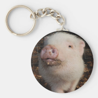"""Dirty Snout, Pig 2.25"""" Basic Button Keychain"""