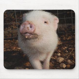 Dirty Snout Pig, Mousepad