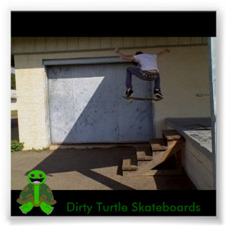 Dirty Turtle Skateboards Poster
