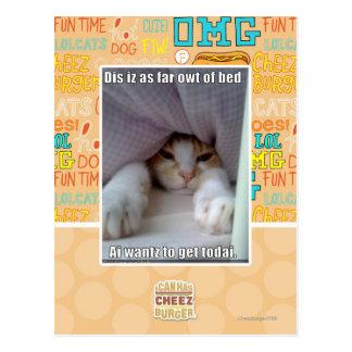 Dis iz as far owt of bed.. postcard