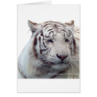 Disappearing Tigers Card