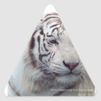 Disappearing Tigers Triangle Sticker