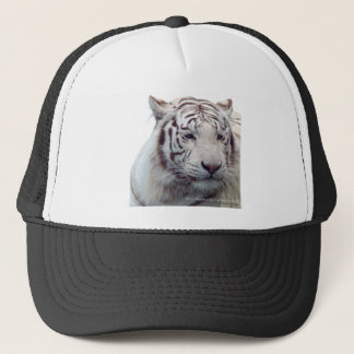 Disappearing Tigers Trucker Hat