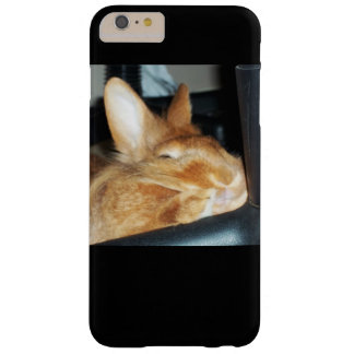 Disapproving Bunny Rabbit iPhone Case
