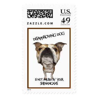 Disapproving Dog Bulldog Not Amused by Shenanigans Postage Stamps