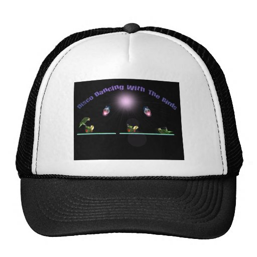 Disco Dancing with the Birds Hat