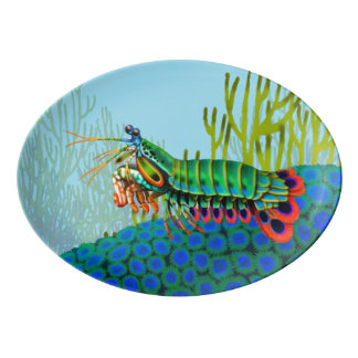 Disco de la porcelana del filón del camarón de plato de porcelana