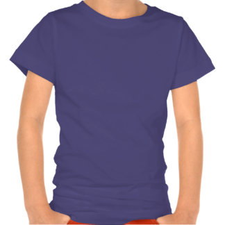 Disco de VUELO - modelos del arco iris del círculo Camisetas