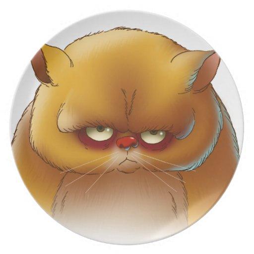 disco del gato plato para fiesta