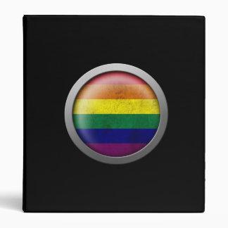 Disco del orgullo gay de la bandera del arco iris