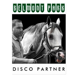 Disco Partner- NY Bred Postcard