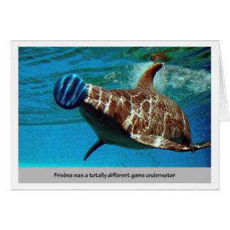 Disco volador del delfín felicitaciones