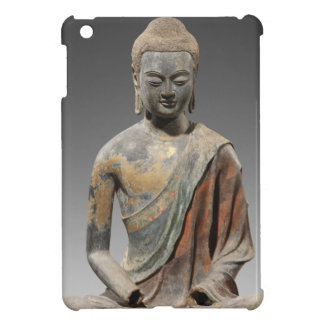 Discolored Buddha Sculpture - Tang dynasty (618) iPad Mini Cover