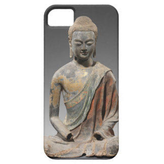 Discolored Buddha Sculpture - Tang dynasty (618) iPhone SE/5/5s Case