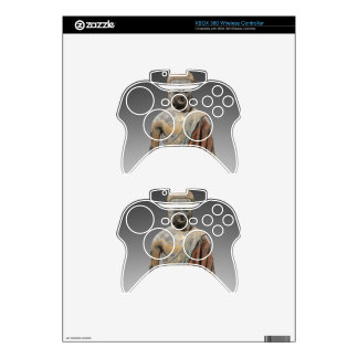 Discolored Buddha Sculpture - Tang dynasty (618) Xbox 360 Controller Decal