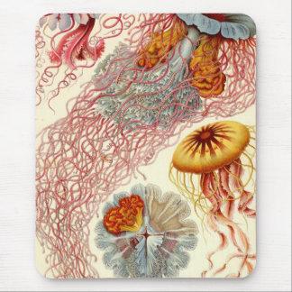 Discomedusae Jellyfish Mouse Pad