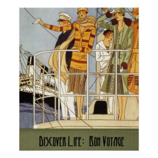 Discover Life:  Bon Voyage Poster