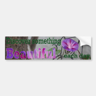 Discover Something Beautiful Each Day Bumper Sticker