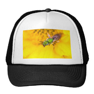 discovering yellow trucker hat