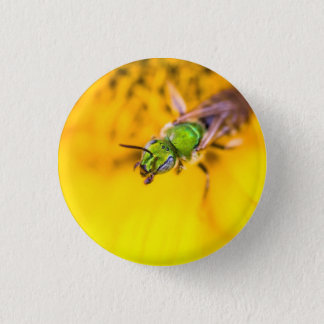discovering yellow pinback button
