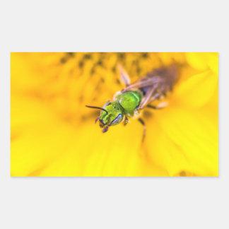 discovering yellow rectangular sticker