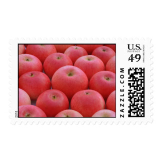 Discovery Apples Postage Stamps