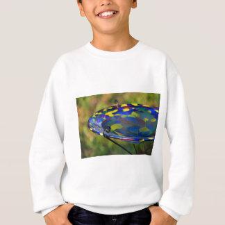 Discriminating Bath Sweatshirt