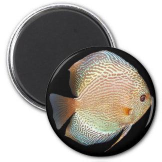 discus 2 inch round magnet