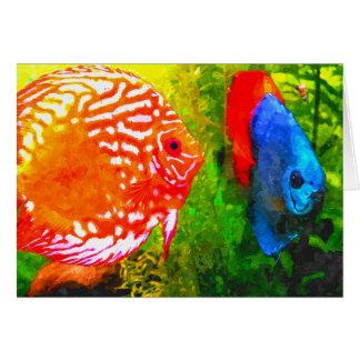Discus aquarium fish all occasions greeting card