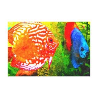 Discus aquarium fish canvas print