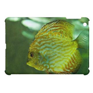Discus Fish iPad Mini Cases