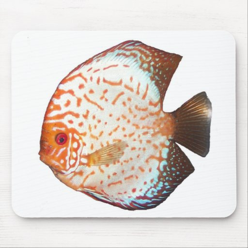 Discus Mouse Pad
