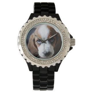 ¡Diseñe su propio reloj del mascota! Traiga a su
