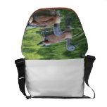 Diseño #1 de la bolsa de mensajero de los patos bolsa de mensajería