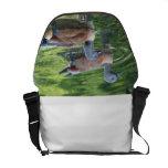 Diseño #2 de la bolsa de mensajero de los patos bolsa messenger