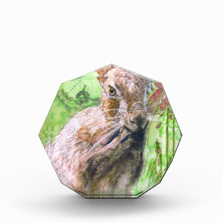 Diseño 3 de las liebres y del Foxglove