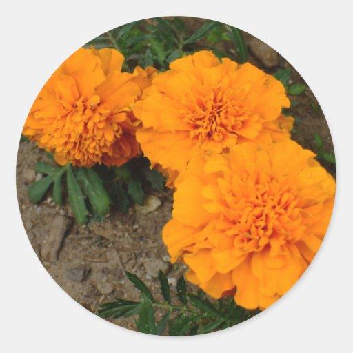 Diseño anaranjado de tres maravillas pegatina redonda
