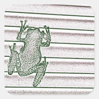 diseño anfibio del diseño rosado blanco verde de calcomanías cuadradas