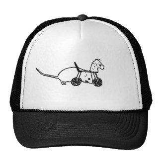 diseño animal lindo del caballo de la afición del gorras de camionero