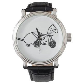diseño animal lindo del caballo de la afición del reloj