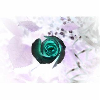 diseño aseado subió de la imagen de la flor del tr