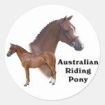 Diseño australiano del potro pegatina redonda