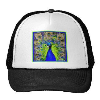Diseño azul de las plumas del pavo real gorras de camionero