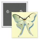 Diseño blanco bonito de la mariposa pin